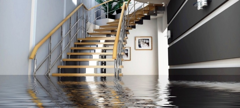 Home Buying and Water Damage