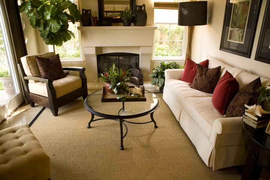 Earth Color in the Living Room