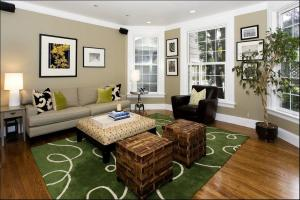 Living Room Decor Color Scheme