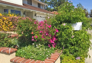 Charming Planter and Mail Box at Mission Viejo Home