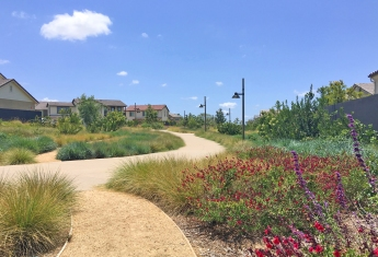 Walking Trail Through Pavilion Park Irvine