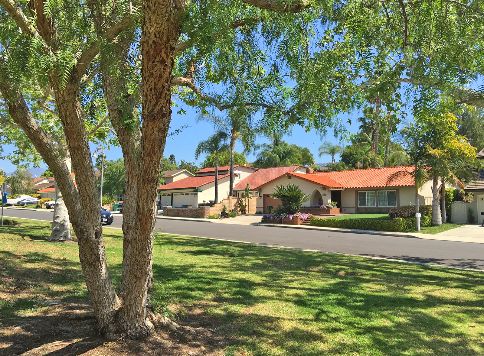 August Orange County Real Estate Stats and Trends