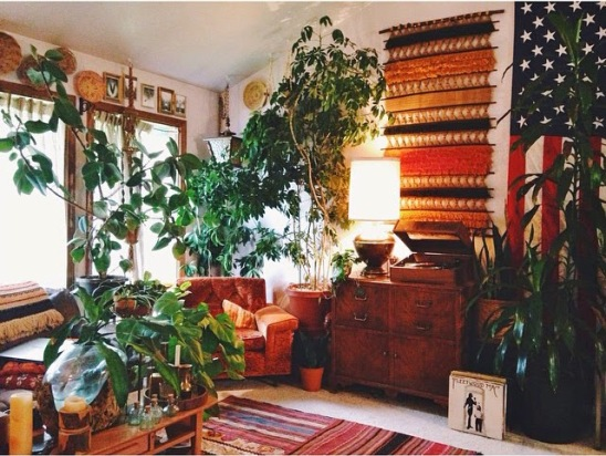1970's indoor plants home staging.